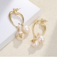 Pearl Decorative Gold Plated Elegant Earrings Pair - Golden