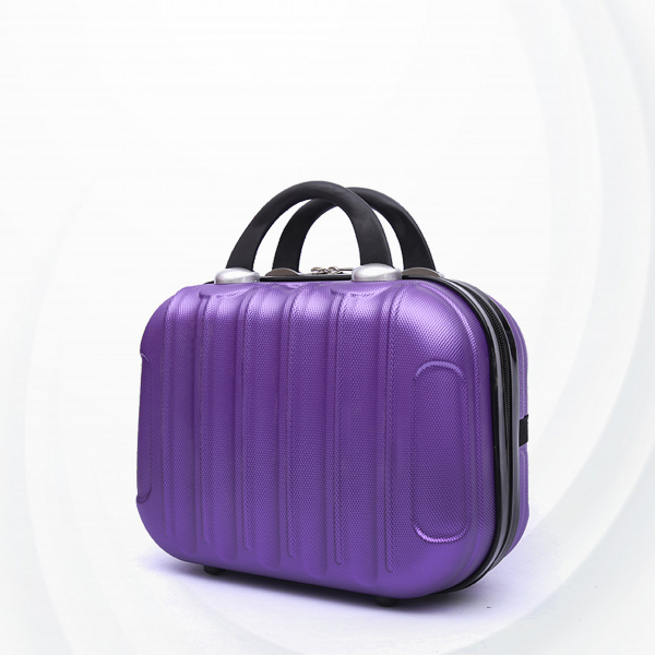 Hard Case Protective Hand Carry Luggage - Purple