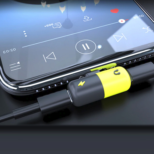 Two In One iPhone Charging With Earphone Cable Gadget