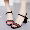 Embroidery Heel Canvas Strapped Sandals - Black