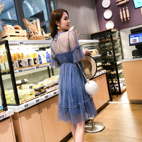 Decorated Round Neck Transparent Net Party Dress - Blue