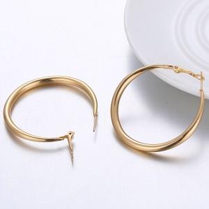 Classic Gold Plated Hook Lock Earrings - Golden
