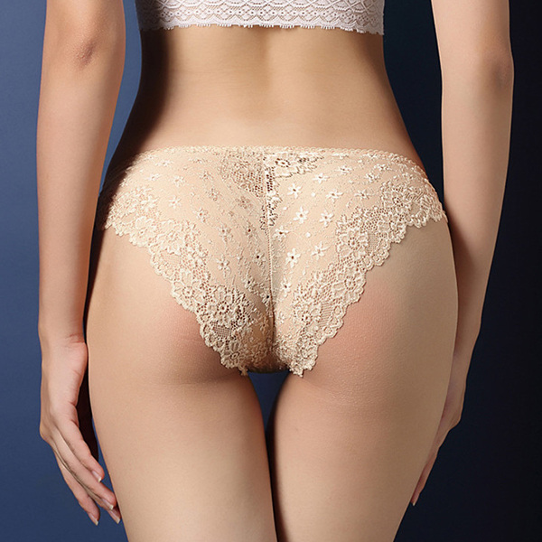 Lace Embroidered Texture Frill Transparent Panty - Beige