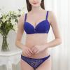 Shiny Lace Blue Floral Pattern Bra Set