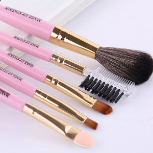 Professional Five Pieces Makeup Brushes Set