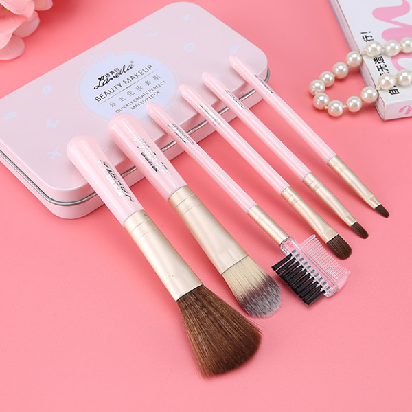Six Pieces Makeup Brushes Set