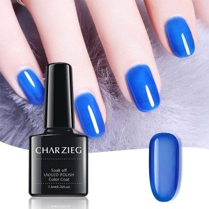 Beautiful Nail UV LED Nail Polish Color Coat - Dark Blue