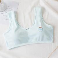 Padded Casual Wear Inner Summer Women Fashion Bra - Blue