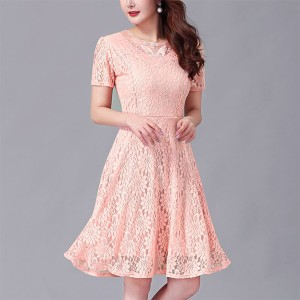 Round Neck Short Sleeves A-Line Lace Mini Dress - Apricot
