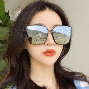 Unisex Oversize Frame Wild Sunglasses - Black Silver