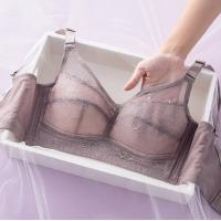 Padded Lace Textured Hooked Closure Bra - Purple