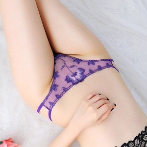 Women Sexy Floral See Through Embroidery Panties - Blue