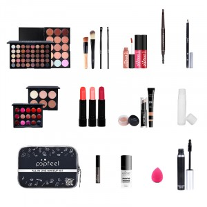 Fancy Eye Shadow Pallet With Brushes Multi Products Makeup Set