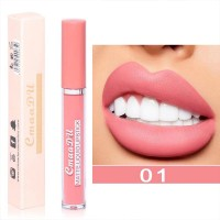 Long Lasting Waterproof Matte Liquid Lip Gloss 01 - Light Pink