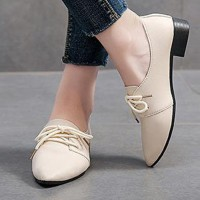 Pointed Lace Closure Plastic Sole Formal Shoes - Beige