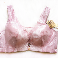 Fashionable Lace Without Steel Ring Gathered Adjustable Underwear - Bean Paste