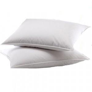 2 Pieces Soft and Comfy Pillows Set