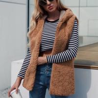 Sleeveless Furry Hoodie Style Outwear Jacket - Brown