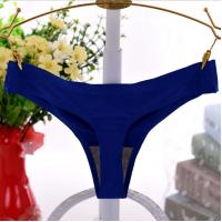 Elastic Waist Nylon Sexy Wear Panty - Blue
