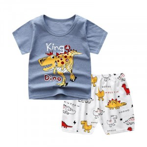 Dino Printed Round Neck Kids Matching Sets - Gray