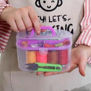 10 In 1 Multifunction Thorn Rust Sewing Kit Box - Pink
