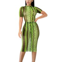 Body Fitted Short Sleeves Printed Thin Fabric See Through Sexy Dress - Green