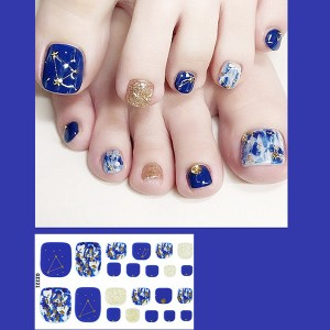 Set Of 22 Pieces Full Beauty Foot Nails 3D Stickers 221 - Blue