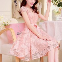 Lace Textured See Through Short Sleeves A-Line Mini Dress - Pink