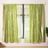 Tulle Design Double Layer Window Curtains 2 Pieces Set - Green