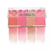 4 In 1 Color Face Blush Trimming Powder Tray - Rose