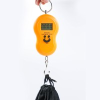 Mini Digital Scale Kitchen Scale Hanging Luggage Weighing Scale LCD Display