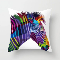 Rainbow Zebra Print With White Background