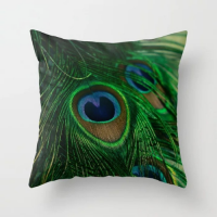 Fancy Peacock Feather Design Cushion Cover