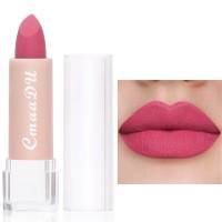 Moisturizing Waterproof Long Lasting Women Lipstick 01 - Cherry Red