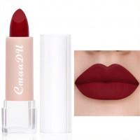 Moisturizing Waterproof Long Lasting Women Lipstick 13 - Berry Red