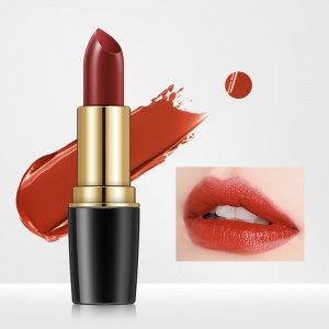 Waterproof Long Lasting Charming Color Women Lipstick 05 - Red