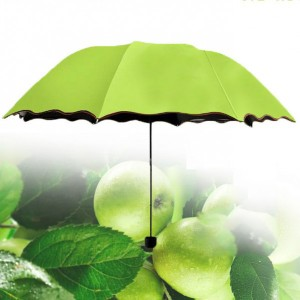 Rain Blossoms Sun Shade Block Umbrella - Green
