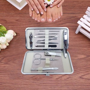11 Pcs Stainless Steel Nail Care Clippers Cleaner Kit with Case - Silver