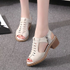 Cross Tie Zipper Closure Medium Heel Sandals - Beige