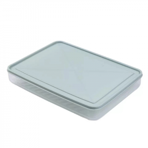 Fancy Egg Storage Tray Box With Lid - Blue